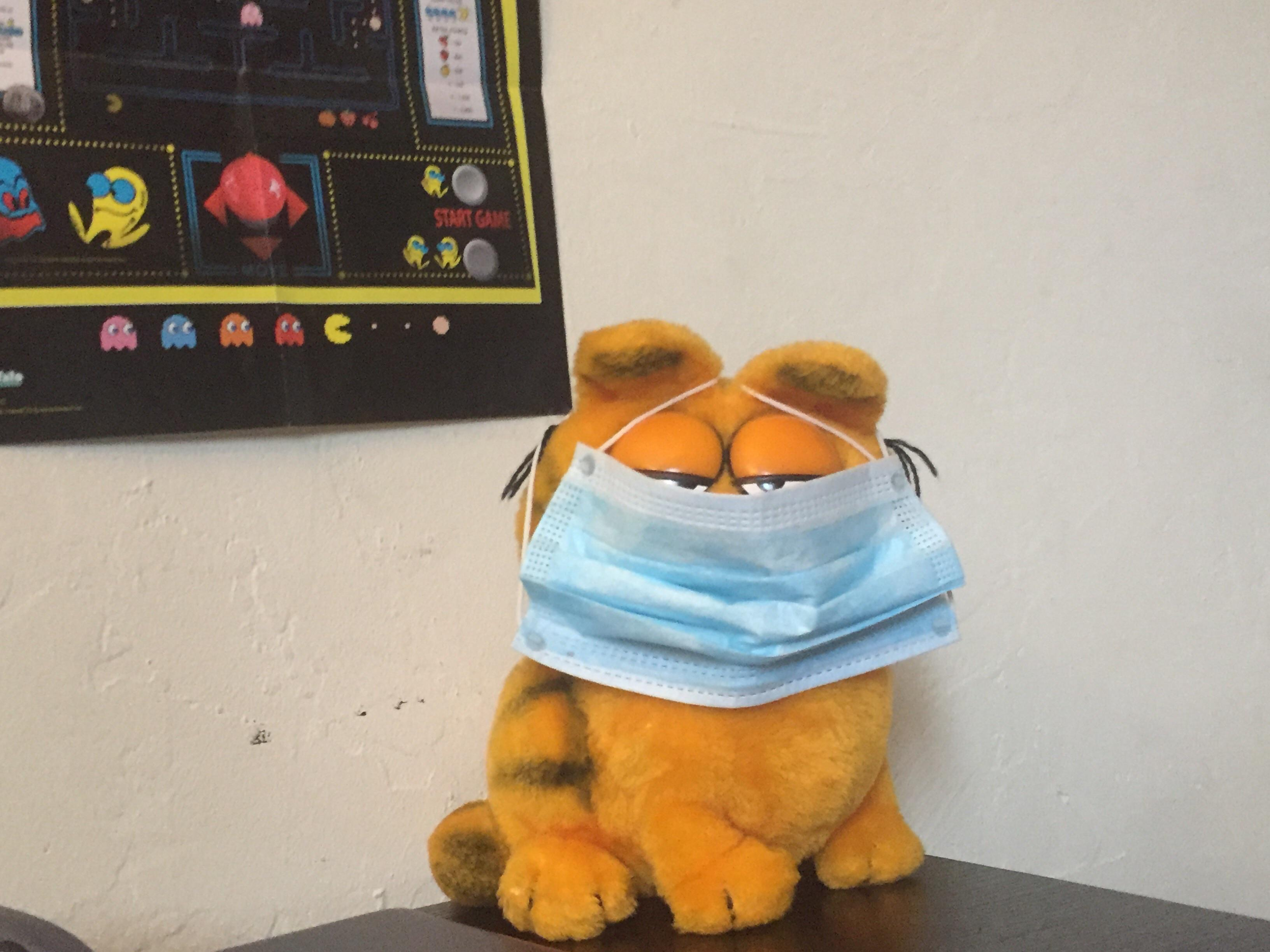 The Garfield Cursed Image Gallery